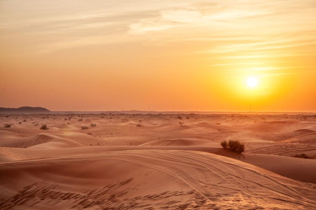 Пустыни и всё о них